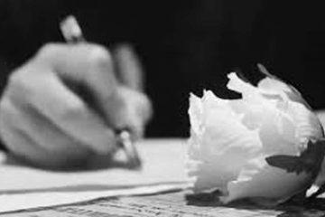 mano de escritor al fondo y en primer plano rosa blanca. Foto en blanco y negro