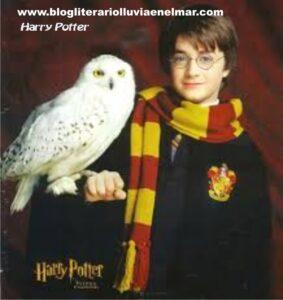 HarryPotterconlechuzablogliterariolluviaenelmar