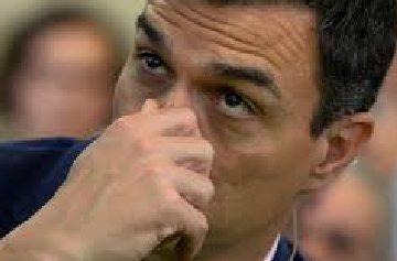 Pedro Sánchez, del PSOE, tocándose la nariz